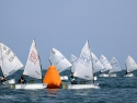 Optimist End of Year Regatta